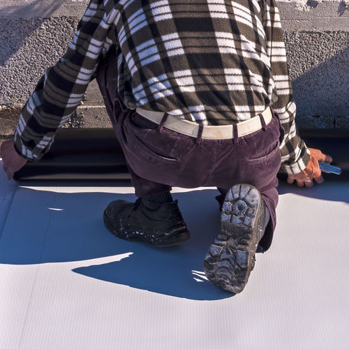 TPO roof system